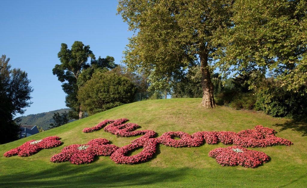 Mazamet in flowers