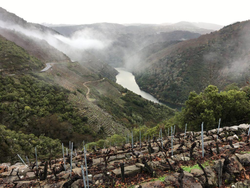 Riberia Sacra vineyards